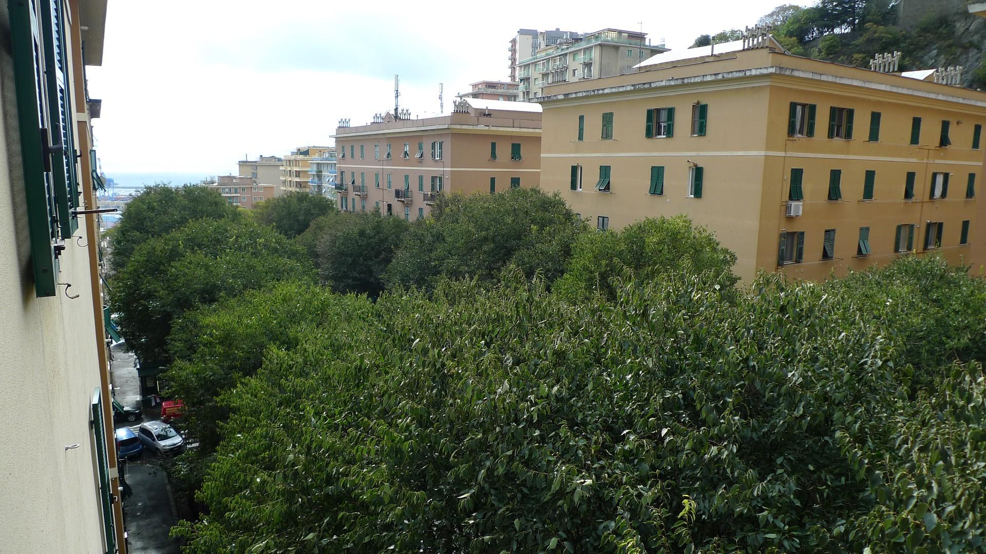 Foto 1 di Appartamento Genova (zona San Teodoro)