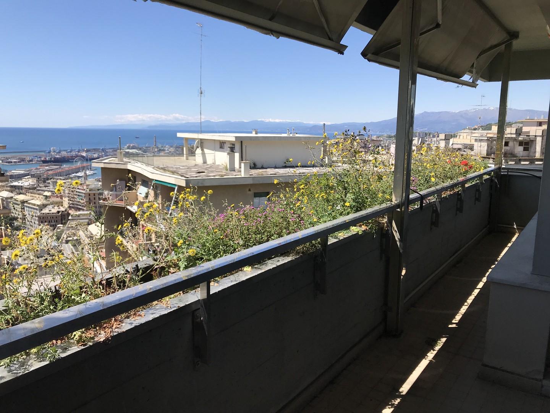 Foto 1 di Appartamento VIA ACQUARONE (PARCO), Genova (zona Carignano, Castelletto, Albaro, Foce)